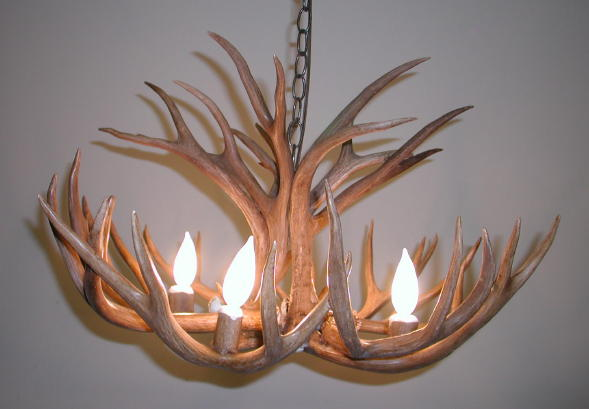 Real Deer Antler Chandelier Chandeliers Design – Real Deer Antler Chandelier
